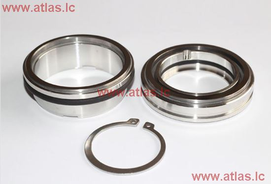 FQL-60 Mechanical seal