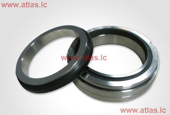 EagleBurgmann Type H10 O-ring Mechanical Seal