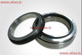 EagleBurgmann Type H12N O-ring Mechanical Seal