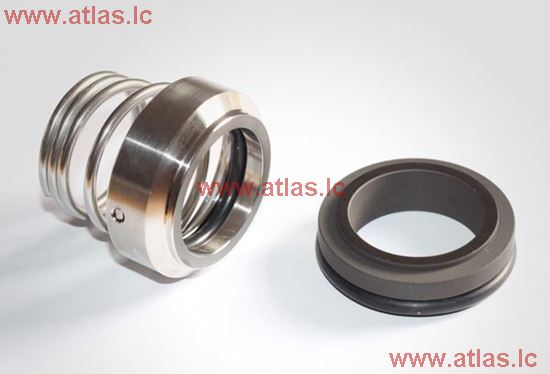 AESSEAL Type SAI O-ring Mechanical Seal